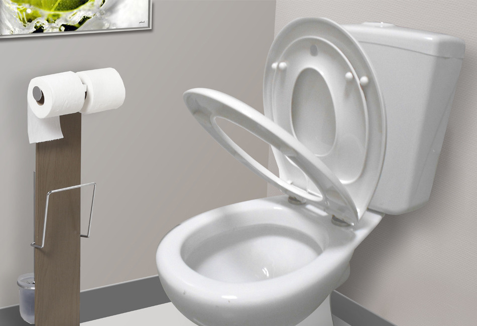 abattant wc marron chocolat ides abattant wc accessible enfant kids dallibert with abattants wc allibert