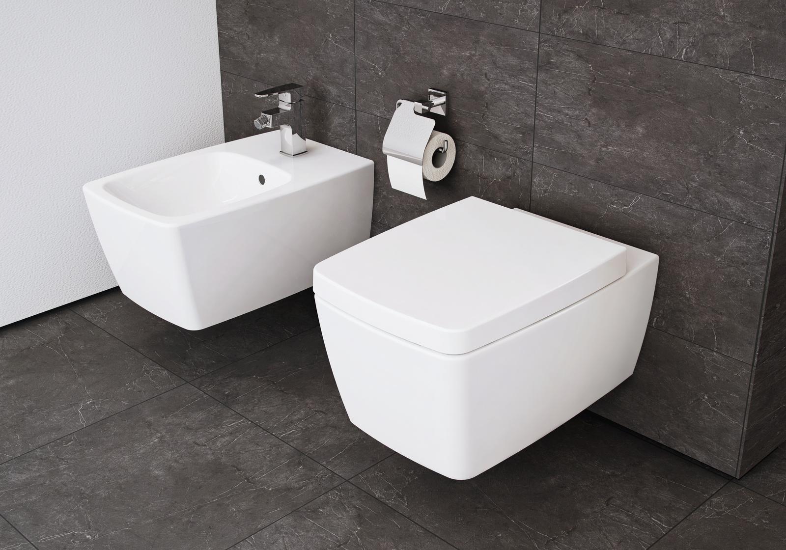 Salle De Bains Toilettes Difference ~ wc et bidet suspendus metropole de vitra salle de bains