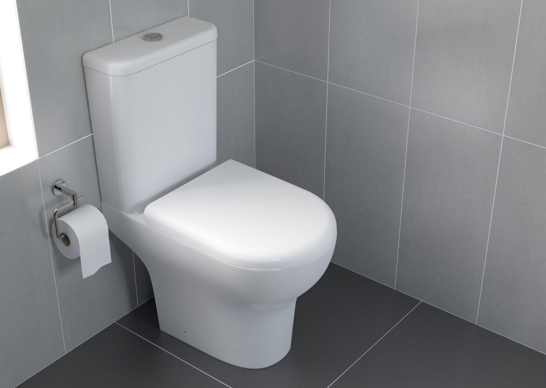 wc sur pied zentrum vitra salle de bains. Black Bedroom Furniture Sets. Home Design Ideas