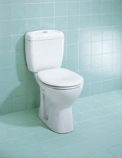 wc accessibles sur lev s dans la salle de bain. Black Bedroom Furniture Sets. Home Design Ideas