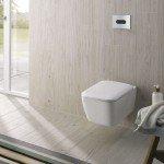 Le WC sans bride,aussi appelé «Rimless»,  au top de l'...
